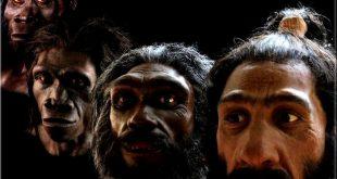 existe-il des humains hybride mi-homme ?