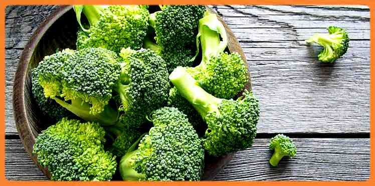 aliment le plus riche en fer Brocoli