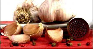Bienfaits de l'ail: 10 avantages pour ta santé