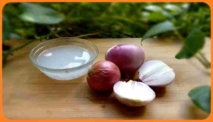 Canitie 5 remèdes et 10 colorants naturels