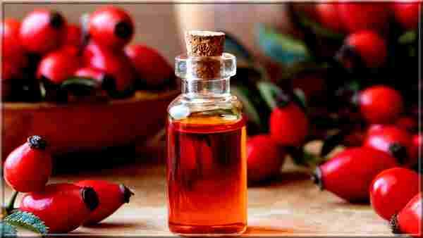 Bienfaits de l'huile végétale de Rose Musquée bio pour les cheveux et la peau: