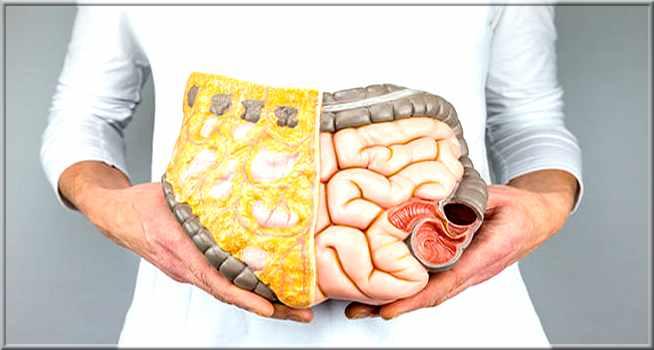 Intestin irritable que manger: 6 aliments pour soulager les symptômes