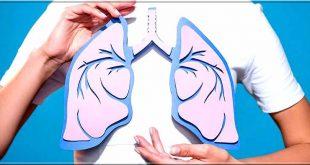 Top 10 des aliments pour améliorer la santé pulmonaire